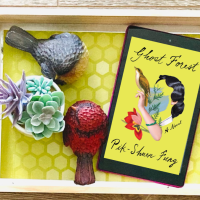Jee reviews Ghost Forest by Pik-Shuen Fung @OneWorldLit #GhostForest #bookreview #asianlit #booksbypoc #debutnovel #fiction #asianliterature #immigrantstory #astronautfamily #chineseculture